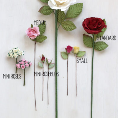 Paper Rose sizes