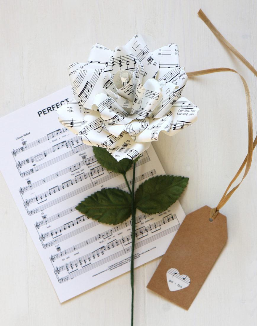Music Paper Rose