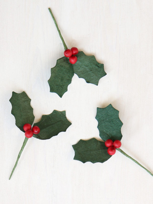 Paper Holly