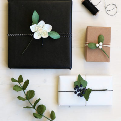 Paper Craft & Gift Wrap