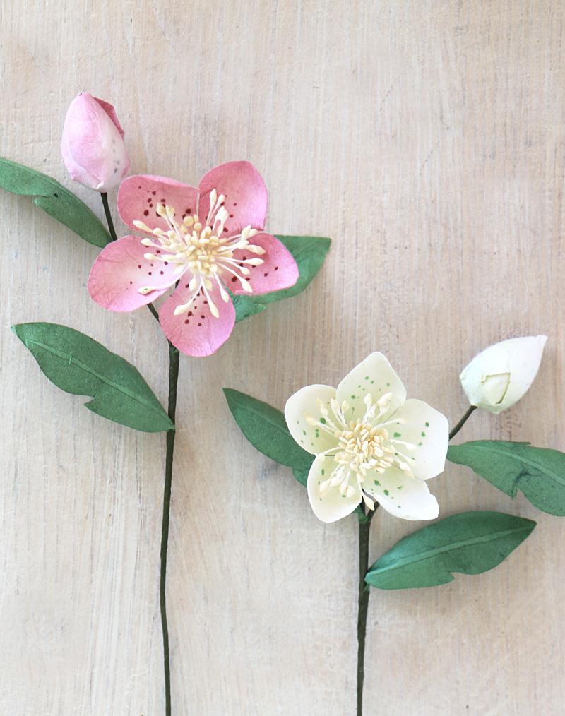 Paper Hellebore Or Christmas Rose Handmade Paper Flower
