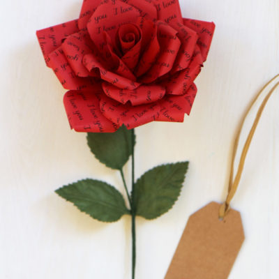 Paper Rose Gift