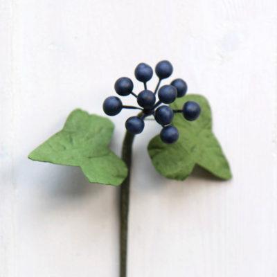 Ivy Berry