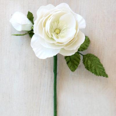 Paper Ranunculus Rose White
