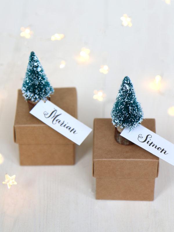 Christmas Favour Boxes