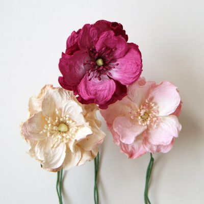 Wild Paper Roses