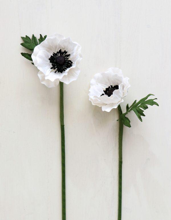 Paper Anemone White