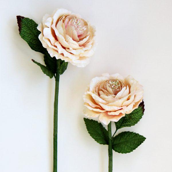 English Paper Rose